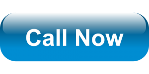 Sanford Pest Control Call Now