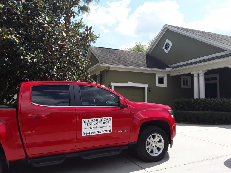 DeBary Termite Inspection